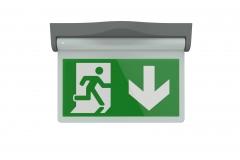 Exit-Sign-Master-Visuals-16